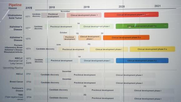 ▲보로노이 파이프라인 개발현황 (사진: 보로노이 IR 행사 발표자료)