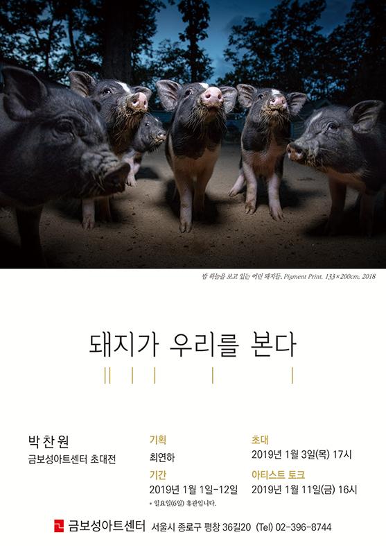 ▲'돼지가 우리를 본다' 전시 포스터(박찬원 작가 제공)