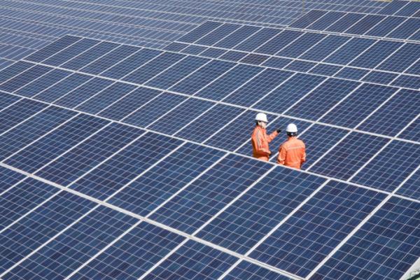 ▲태양광 발전소 현장사진(사진 제공=한화에너지)