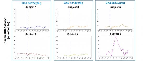 ▲상가모의 SB-913 1/2상 중간결과. 6명의 환자 중 1명(Subject 6)만이 2형 뮤코다당증의 원인인 글리코사미노글리칸 축적을 저해하는 IDS 효소 활성이 확인됐다. 상가모 테라퓨틱스 기업설명회 자료.