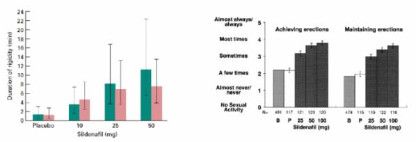 ▲그림 1. 실더나필의 임상개발 과정. (좌) 최초의 파일럿 임상 시험에서 실더나필은 용량 의존적으로 성기의 경직도 유지시간을 늘리는 것을 보여주었다[2] (우) 514명의 발기부전 환자를 대상으로 한 임상 시험에서 실더나필은 발기 여부와 발기 지속력의 향상에 보탬이 된다는 결과가 나왔다 [4]