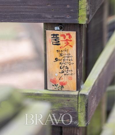 ▲덕음산 솔바람길 데크 산책로에 전시된 캘리그래피 작품(김혜영 여행작가)