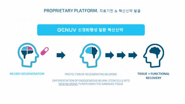 ▲지뉴브의 퇴행성 신경질환 치료제 개발 전략(지뉴브 제공)