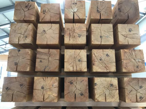 ▲ 라디에이터 방식으로 말린 목재. 손가락이 들어갈 만한 균열이 생긴다.
