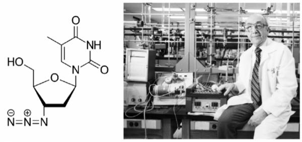 ▲그림 1. (좌) 최초의 HIV 감염자 치료에 사용된 아지도티미딘 (azidothymidine, AZT)의 화학 구조 (우) AZT의 개발자 제롬 호위츠 (Jerome Horwitz). AZT는 DNA의 티민 뉴클레오타이드의 유사체로써 세포 내에 들어가 인산화되어  뉴클레오타이드가 된 이후 역전사효소를 저해한다. 원래 항암제로써 암세포의 DNA 합성을 저해하려는 목적으로 탄생한 AZT는 항암 효과가 나타나지 않아 잊혀진 물질이었으나 개발된지 20년 후에 역전사효소를 강하게 저해한다는 것이 발견되어 항바이러스제재로써 부활하게 되었다.