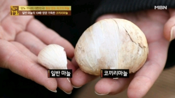 (출처=MBN '천기누설' 방송캡처)