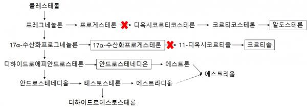 ▲체내 스테로이드 관련 호르몬 합성 기전, 21-수산화효소 결핍 시 알도스테론, 코르티솔 합성이 억제(바이오스펙테이터 정리)