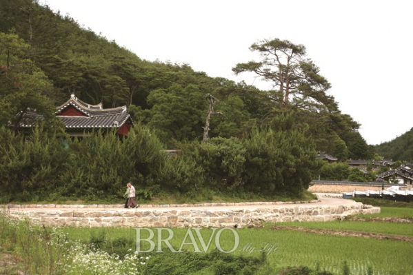 ▲닭실마을 마을길(김혜영 여행작가)