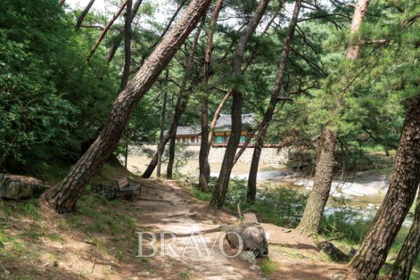 ▲소나무 사이로 보이는 석천정사(김혜영 여행작가)