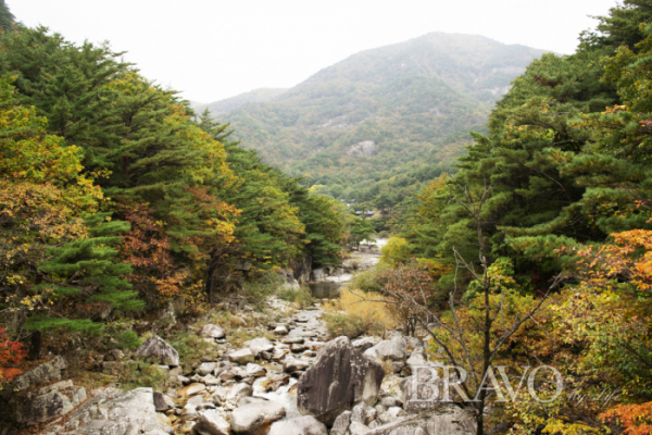 ▲무릉계곡의 가을(서동환 동년기자)