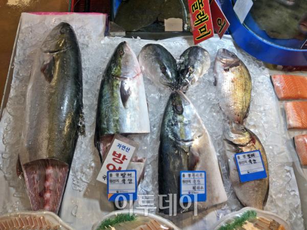 ▲1kg당 3만5000원이라는 노량진의 방어. 방어가 비싼 대신 굴과 찌개용 생선을 추가해준다고 했다.  (홍인석 기자 mystic@)