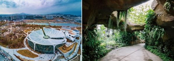▲서울식물원 외관과 내부 모습(서울식물원 제공)