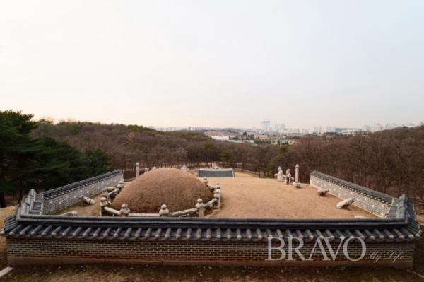 ▲정성왕후 릉(사진 =서동환 동년기자)