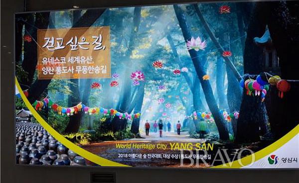 ▲서울역에 세운 경남 양산시 걷고싶은 길 소개 광고(홍지영 동년기자)