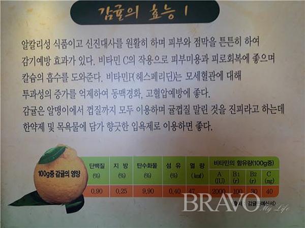▲감귤의 효능(사진 홍지영 동년기자)