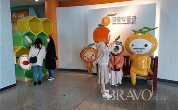 ▲감귤박물관 홍보물(사진 홍지영 동년기자)
