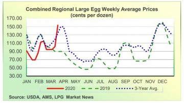 ▲미국 계란 도매가격 추이. 단위 한 판(12개)당 센트. 빨간색: 2020년(3월 23일 153.63센트)/녹색 점선:2019년/파란색 점선: 3년 평균. 출처 농무부