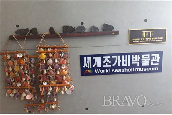 ▲세계조가비박물관 내부 현판(사진 홍지영 동년기자)