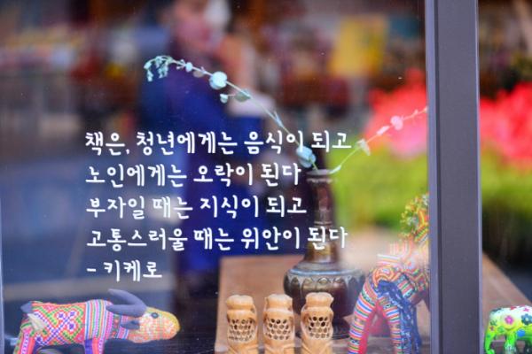 (사진 황정희 시니어기자)