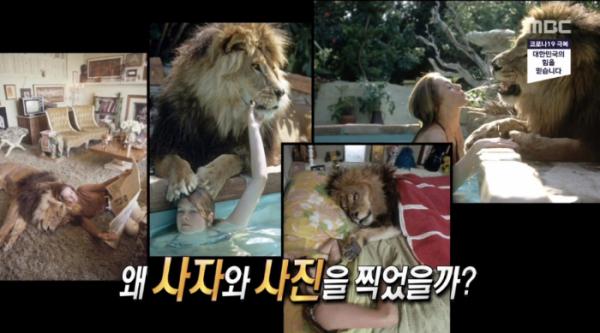 ▲영화 '로어' (사진=MBC '서프라이즈' 방송화면 캡처)