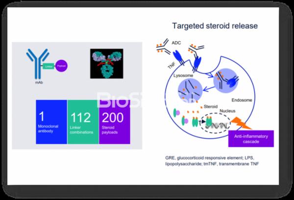 ▲애브비가 공개한 TNF-스테로이드(steroid) ADC 플랫폼.