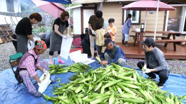 ▲'한국인의 밥상' 옥수수(사진제공=KBS 1TV)