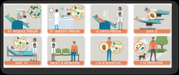 ▲FCR001 이용한 신장이식환자의 면역관용 유도 치료 과정 (출처: 탈라리스 홈페이지)