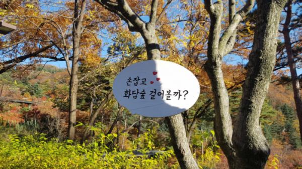 ▲수석과 가을 단풍이 어울려 색다른 풍경을 자아낸다. 곤지암 리조트 옆에 위치한 화담숲은 2013년에 일반인에게 정식 오픈됐다.(사진 이명애 시니어기자)