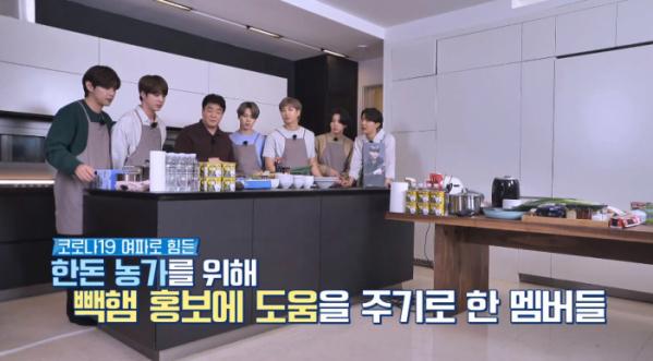 ▲빽햄 백종원 방탄소년단(사진='달려라 방탄' 방송화면 캡처)