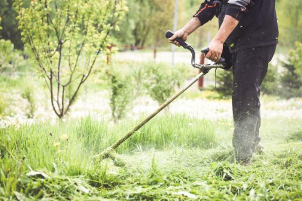 ▲벌초와 성묘로 야외활동이 많아지는 9월부터 11월까지 가을 전염병에 감염될 가능성이 높다. 나이가 많고 다른 질병이 있을수록 치명적일 수 있으므로 시니어들은 특히 더 조심해야 한다.