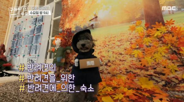 ▲구해줘 숙소(사진=MBC 방송화면 캡처)