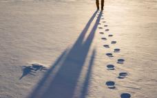 눈밭의 회수권