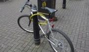 멍청한 자전거 주인