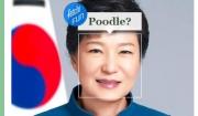 박 대통령은 푸들?