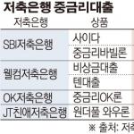 애매한 개인정보법 탓…한국은 빅데이터 무덤