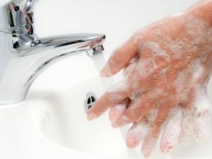 국내 두 번째 콜레라 확진 환자 발생