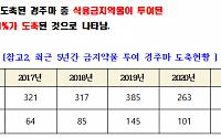 [단독] 한국 마사회, 잇딴 지적에도 '퇴역 경주마' 관리 미흡…올해도 156마리 도축