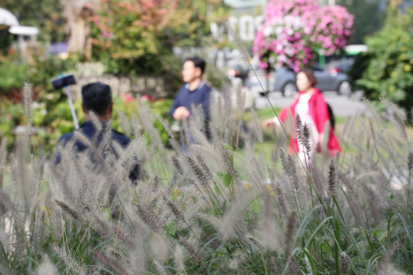 ▲쌀쌀한 가을 날씨를 보인 14일 오전 서울 중구 청계광장 인근에서 시민들이 발걸음을 옮기고 있다. (연합뉴스)