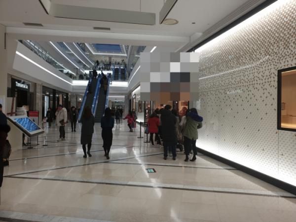 ▲20일 오후 영등포 타임스퀘어점 한 명품관 앞에서 고객들이 줄을 서 입장을 기다리고 있다.  (안경무 기자 noglasses@)