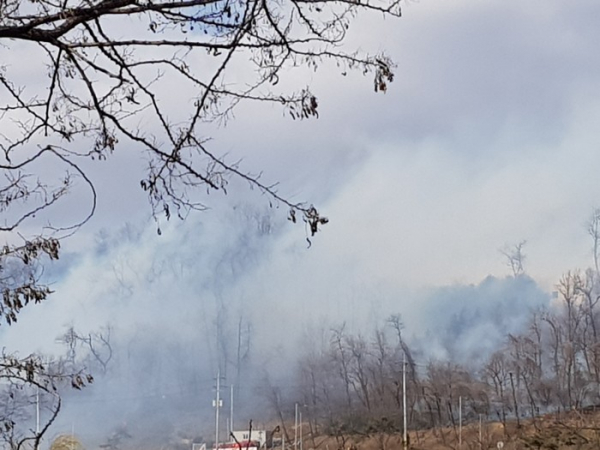 ▲인천시 연수구 옥련동 연경산에서 산불이 발생했다.  (연합뉴스)