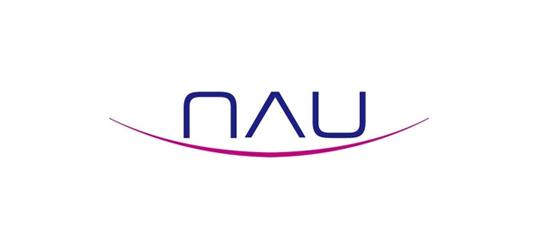 ▲나우IB캐피탈 회사 로고