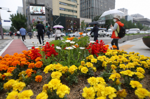 ▲비가 내린 지난 5월 26일 오후 서울 종로구 세종로사거리에서 시민들이 걸음을 재촉하고 있다.  (연합뉴스)