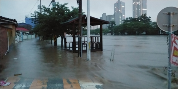 ▲30일 대전 동구 대동천 인근 도로가 빗물에 침수됐다. (연합뉴스)