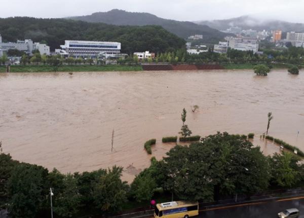 ▲30일 새벽 대전지역에 쏟아진 폭우로 시내를 관통하는 갑천이 물바다로 변해 있다.  (연합뉴스)