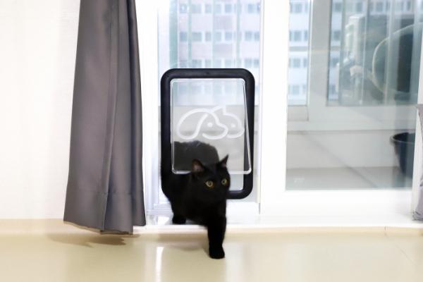 ▲반려동물 안전문 '페도아'는 기존 베란다 디자인과 어울리게 디자인됐다. (사진제공=단짝)