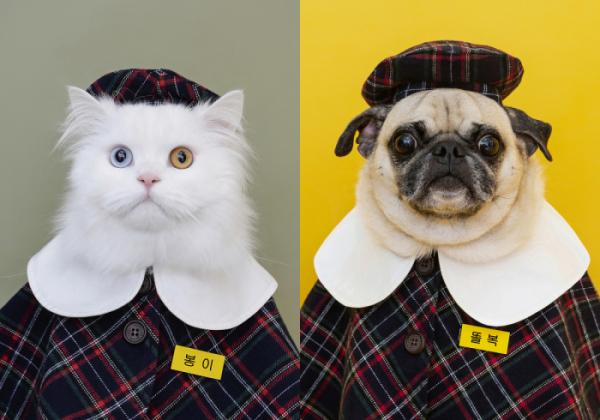 ▲'개린이 졸업사진 찍기 프로젝트'는 졸업사진 컨셉을 위해 특별히 교복(원복)과 이름표를 제작했다.  (사진제공=땡큐스튜디오)
