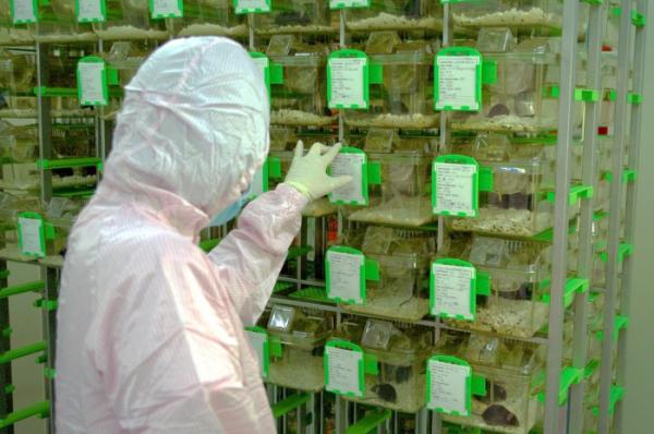 ▲우정바이오 동물실험시설의 모습. (사진 제공= 우정바이오.)