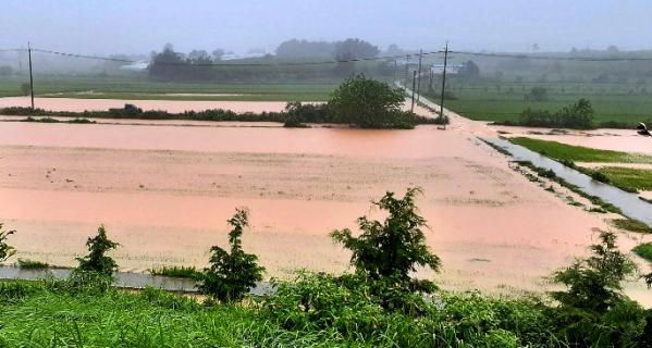 ▲폭우로 침수된 전남 나주 농경지. (뉴시스)