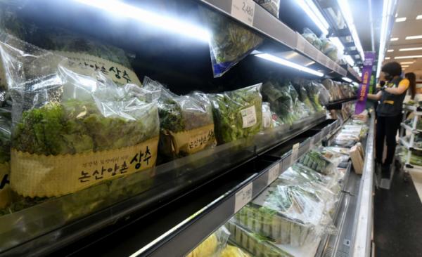▲긴 장마로 채솟값이 폭등하는 가운데 서울의 한 대형마트 신선식품 판매대에서 시민들이 장을 보고 있다. 신태현 기자 holjjak@