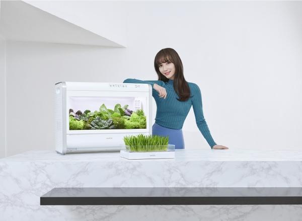 ▲가정용 식물재배기 '웰스팜'(왼쪽)과 새싹재배기  (사진제공=교원웰스)